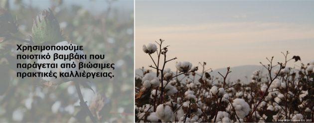 Cotton_textiles
