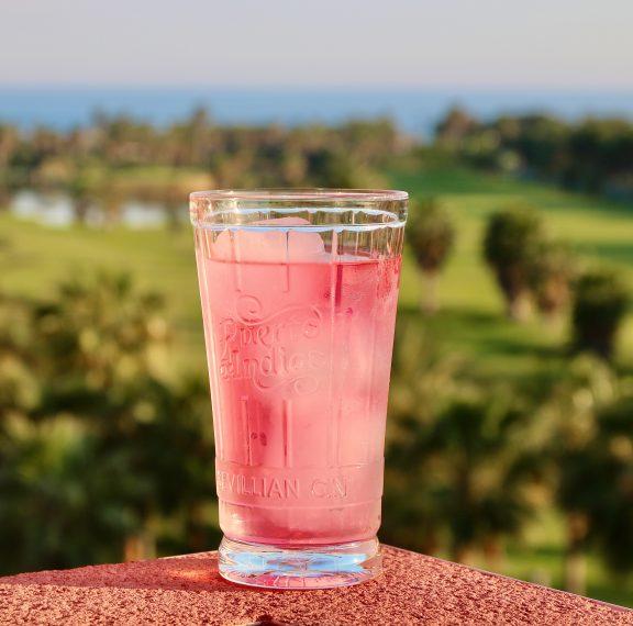 rosemary-gin-φρέσκο-και-δροσερό-κοκτέιλ-για-τις-ζ