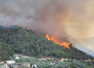πυρκαγιά-καίει-δάσος-στο-κρυονέρι-αττ