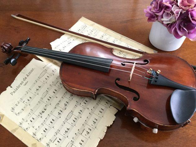 βιολί εκδίκηση1