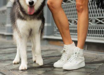 το-κόλπο-για-λευκά-sneakers-σαν-καινούρια