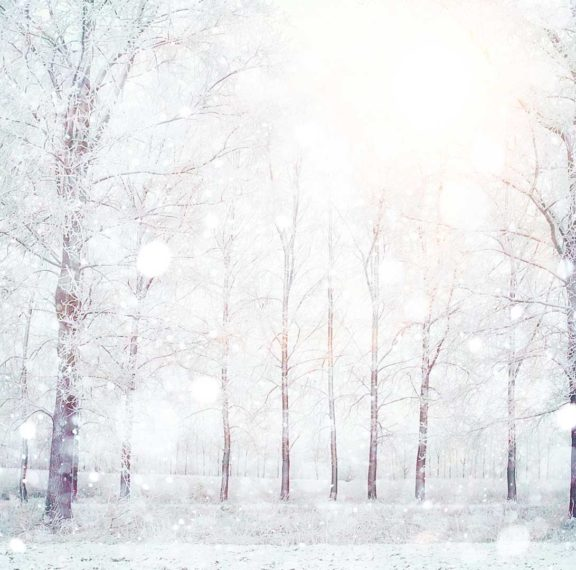 white-christmas-ψυχρό-μέτωπο-θα-σαρώσει-τη-χώρα-για-12