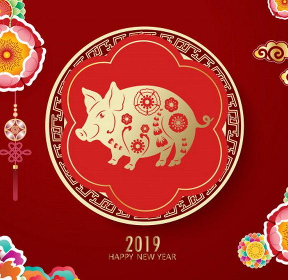 το-2019-είναι-η-χρονιά-του-χοίρου-και-στη-ρω