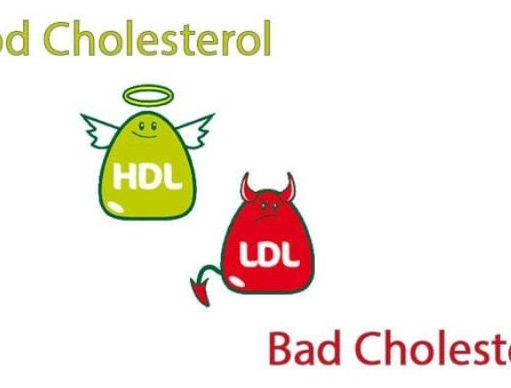 πώς-θα-μετρήσεις-σωστά-τη-χοληστερίνη