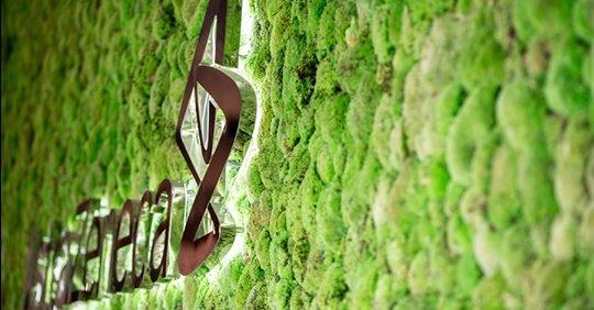 πρόγραμμα-ambition-zero-carbon-της-astrazeneca-μηδενικές-εκπ