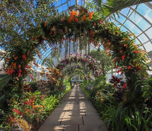 ο-βοτανικός-κήπος-της-νέας-υόρκης-προσ