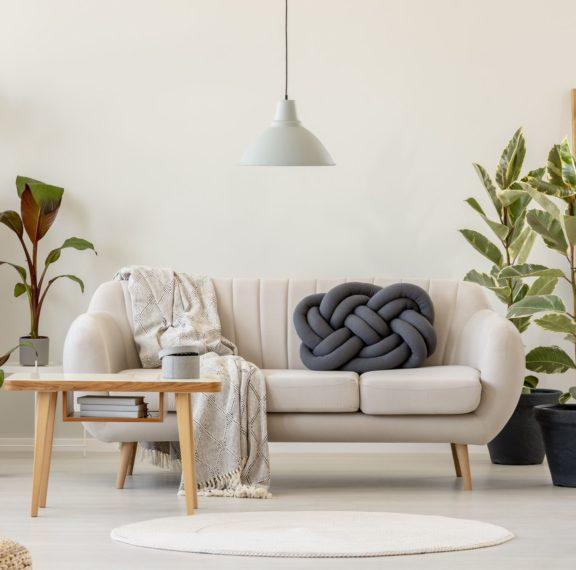 5-φυτά-εσωτερικού-χώρου-που-θα-ομορφύνο
