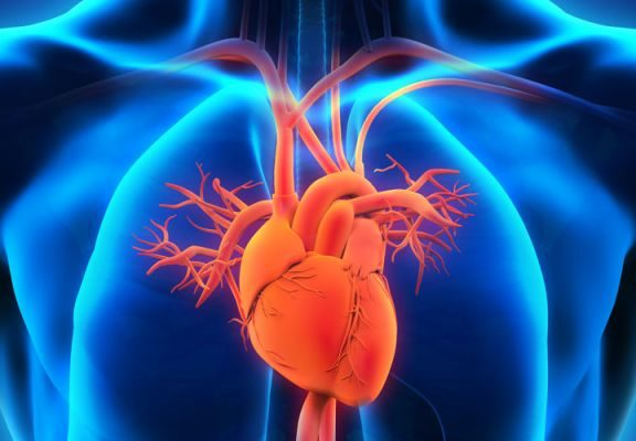η-novo-nordisk-με-την-corvidia-therapeutics-επεκτείνεται-στη-θεραπ