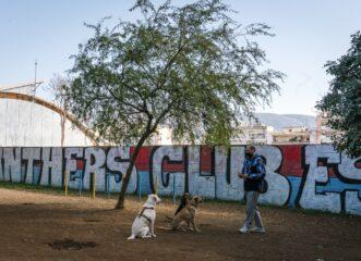 ακόμη-ένα-πάρκο-σκύλων-στην-αττική-δεί