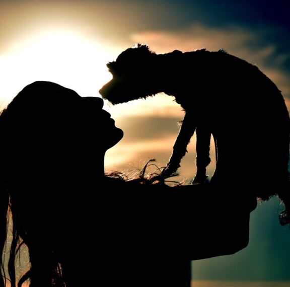 πώς-ο-σκύλος-που-υιοθέτησα-στην-πανδημ