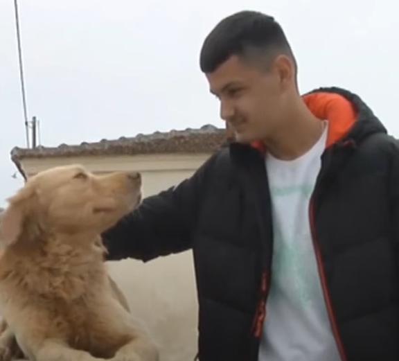 η-συγκλονιστική-ιστορία-του-σκύλου-πο