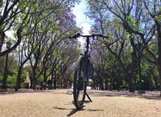 Πάμε για μία ποδηλατική βόλτα στο κέντρο της Αθήνας;