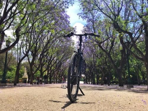 πάμε-για-μία-ποδηλατική-βόλτα-στο-κέντ