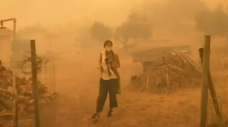 Φωτιά στην Εύβοια: Δημοσιογράφος της ΕΡΤ σώζει γατάκι από τις φλόγες