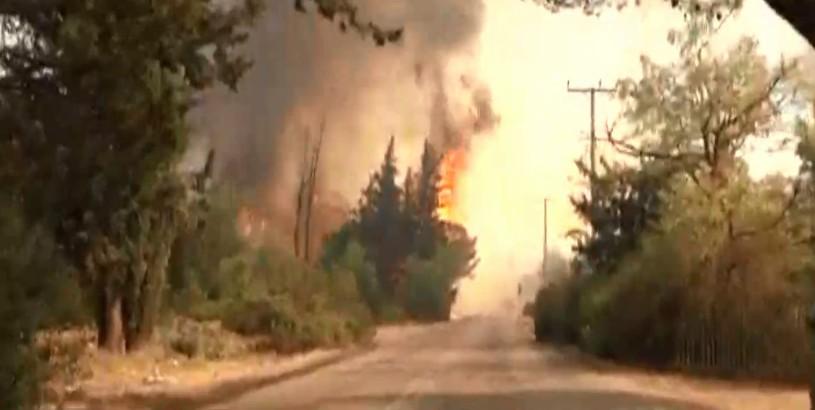 Οδηγίες της Ένωσης Πνευμονολόγων Ελλάδας για τους ανθρώπους κοντά στην περιοχή της φωτιάς
