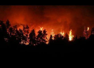 φωτιά-εύβοια-αυτά-τα-είδη-πρώτης-ανάγκ