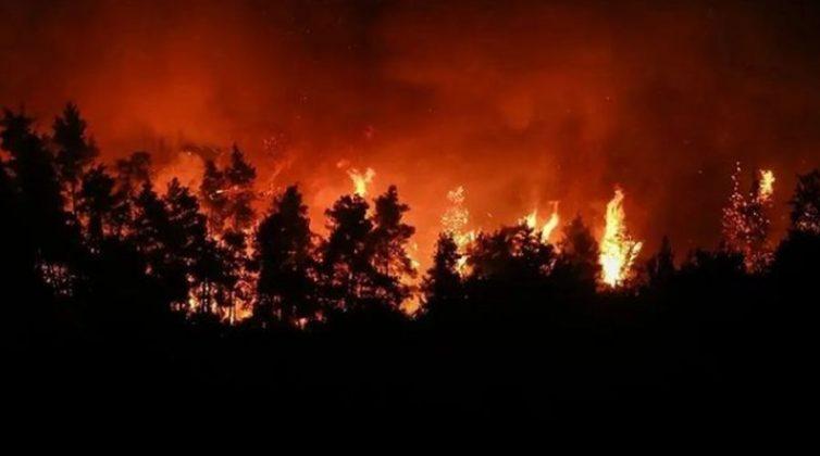 Φωτιά Εύβοια: Αυτά τα είδη πρώτης ανάγκης χρειάζονται οι πληγέντες του Δήμου Μαντουδίου - Λίμνης - Αγίας Άννας
