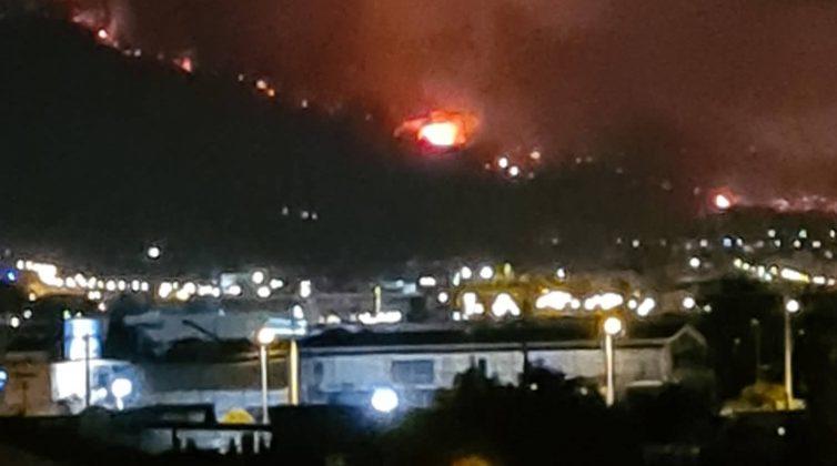 Πυρκαγιές: Τεράστια η οικολογική καταστροφή στη χώρα